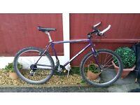 retro dianod back acent mountain bike