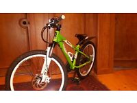 "Carrera Blast 24"" wheel kids bike"