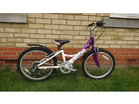"""Girl's bike, 20"""", Made by Dawes, purple and white colour."""