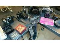 Collection of 3 35 mm cameras and 1digital camera