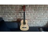 Artisan acoustic guitar with carrier case