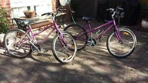 Shogun Trailbreaker  Bikes Brighton Bayside Area Preview