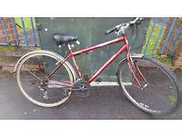 Terrano Vantage Hybrid Bike