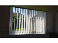 Immaculate Vertical Blinds for sale 10 blinds in total