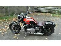 Triumph speedmaster 2004 800 cc