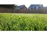 Pure Lawns: lawn and gardening services