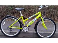 Adult City Style Commuting Bike - Nearly New Condition