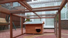 rabbit run and small hut new
