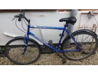 Old bike - needs some TLC