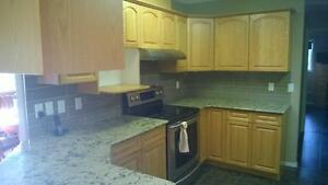 High Quality Kitchen Cabinet Painting
