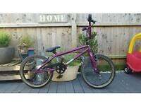 Diamondback Large bmx bike.