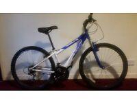 Apollo xc26 Unisex Mountain Bike with Light's and Lock