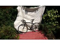 specialized allez bike level entry or pleasure bike very light in good condition bar scratches