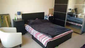 Large double room available over summer in a spacious house