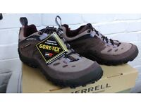 Women's Hiking Shoes - Merrell Chameleon Arc Gore Tex J87812 Brand New Unused In Box