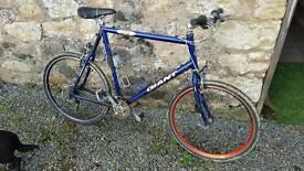 Giant coldrock large mountain bike