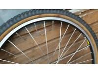 Mountain bike wheel and tyre