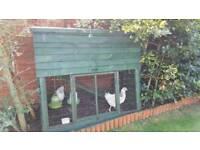 Chicken coop and 2 light Sussex hens