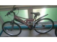 (Brandnew) pink ladies (girls) mountain bike