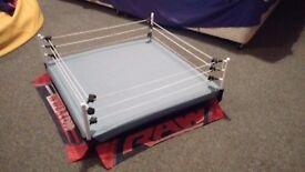 Large wwe wrestling ring