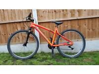 Mens / ladies mountain bike Unisex