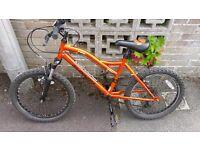 Boys muddy fox mountain bike