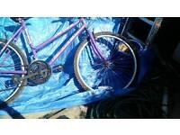 """Bike 15"""""""