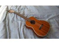 Kala KA-BG baritone ukulele