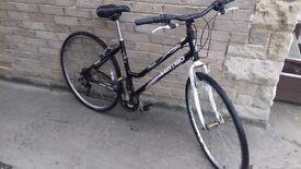 Ladies hybrid mountin bike