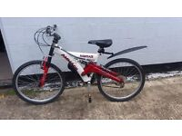 Boys or girls Mountain Bike, ideal Xmas Will deliver