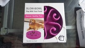 Slow bowls for dogs