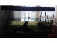 Fish Tank with Stand/Aquarium