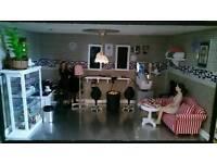 Dolls house salon