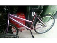 Ladies bike £20 Ono