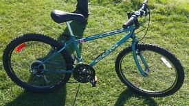 "REDUCED Boys CCM (Canadian) Ecco 24"" bike in teal (green)"