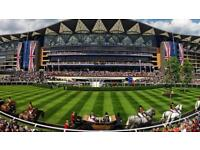 Royal Ascot Races Ticket - Village Enclosure - 23rd June