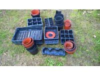 Large Selection of Plastic Plant/Seed Pots and trays