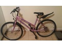 ladies mountain bike 18 speed