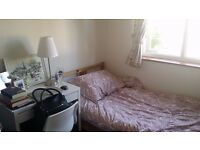 Single room available in Southfields