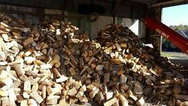 Firewood logs from southwick forestry
