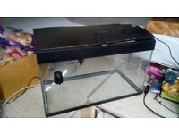 54 Litre Fish Tank Aquarium For Sale Used Stingray Filter Inset Light