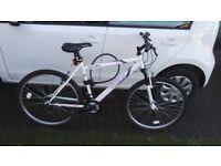Ladies/Girls Apollo Elusion bike