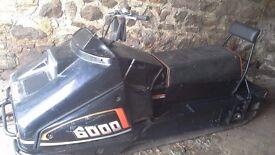 Snow mobile,500cc
