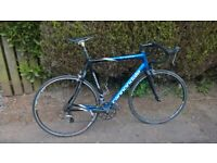 Bike Cannondale Synapse bike SL carbon frame size large 60cm