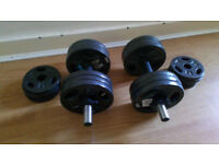 Dumbbells with 32kg weights