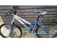 Giant.ladys bike