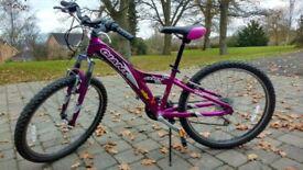 Girls Giant MTX 250 mountain bike