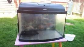 45l fish tank
