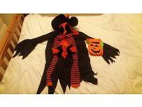 Ladies'/Girl's Halloween Witch Costume