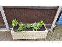 New planters for sale